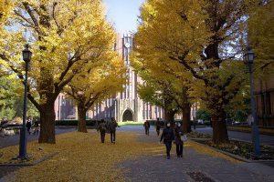 các trường tại Tokyo